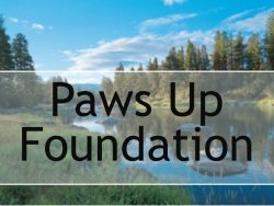 Paws Up Foundation