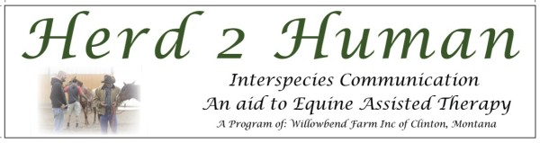 Image of Herd2Human and Willowbend Farm Logo
